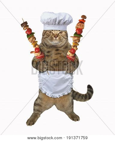 The cat cook is holding shish kebabs. White background.