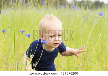 Cute Infant Boy With Funny Facial Expression In The Knapweed Field