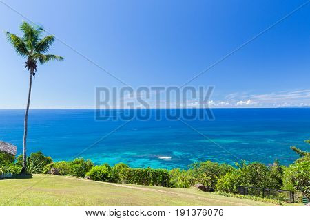 travel, landscape and nature concept - view to indian ocean from island with palm tree