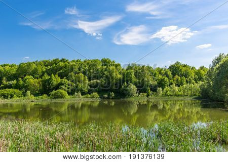 Summer landscape with lake in forest
