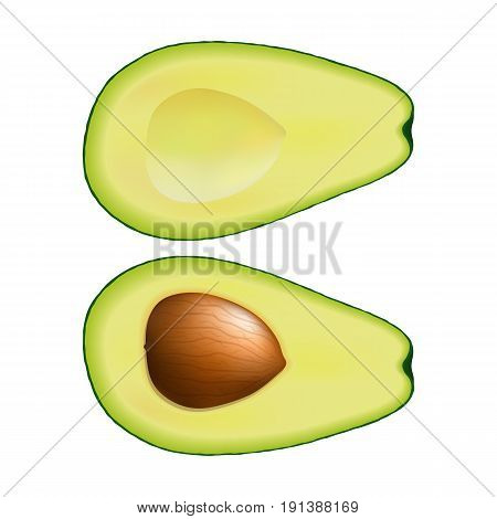 Isolated two halves of green color avocado on white background. Realistic colored slice with pit