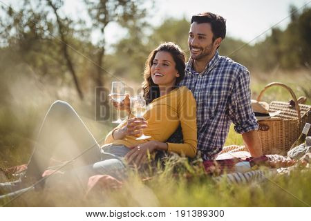 Smiling young couple holding wineglasses while relaxing on picnic blanket at olive farm