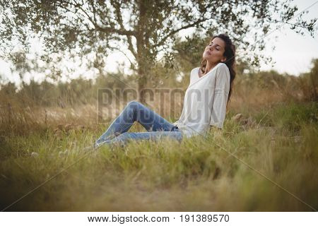 Beautiful young woman resting on grassy field at farm