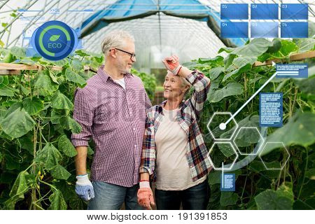 organic farming, agriculture and people concept - happy senior couple at farm greenhouse