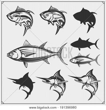 Vector illustrations of Tuna and Marlin. Monochrome design.