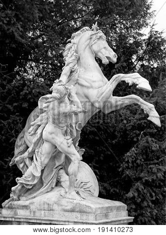 Horse statue in front of the Natural History Museum in Hofburg complex, Vienna, Austria. Black and white image