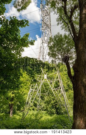 The environmental problem. Support high-voltage lines in the forest.