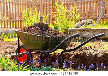 Wheelbarrow full of soil in a garden