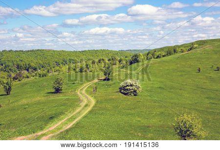 Rut road across green hill