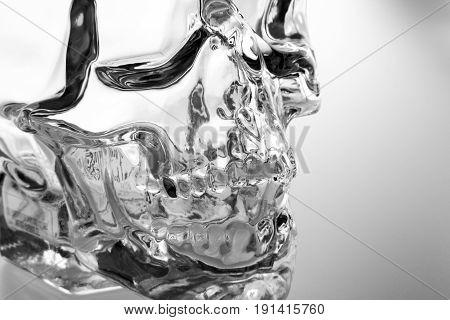 Crystal skull glass brainpan black and white detail
