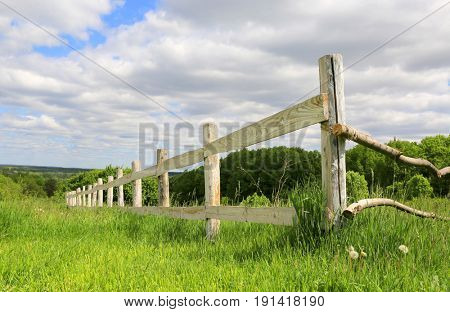 wooden fence on green summer meadow