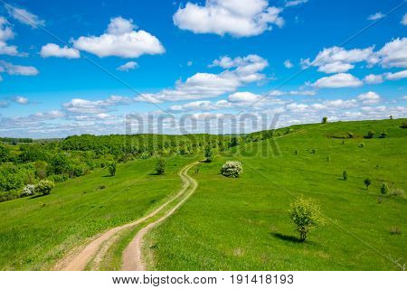 nice landscape with path over green hill