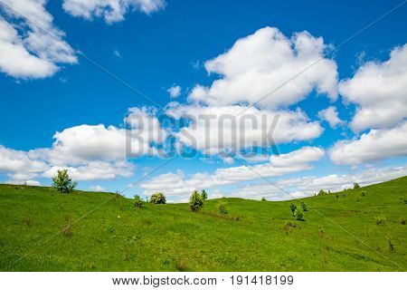Summer landscape with green meadow under nice sky with clouds