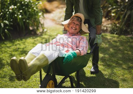 Mid section of man carrying smiling senior woman in wheel borrow at yard