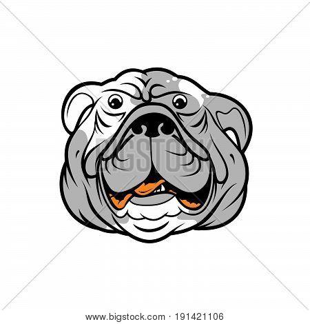 Vector illustration head ferocious bulldog mascot on a white background