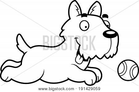 Cartoon Scottie Chasing Ball