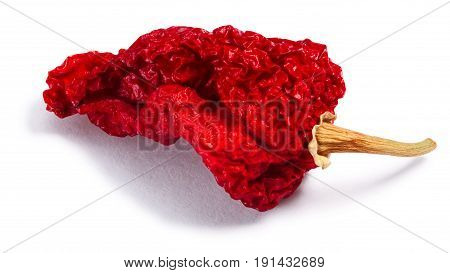Dried Bhut Jolokia Ghost Chile, Paths