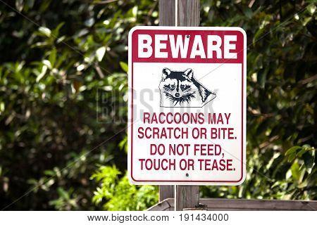 Beware of raccoons sign in Florida USA
