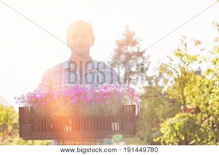 Portrait of confident man carrying crate with flower pots in garden
