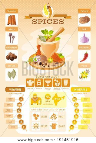 Spice herb icons. Healthy food vector icon set, isolated background. Infographics diagram design. Diet vitamin mineral. Flat illustration. Bay leaf, chili pepper, nutmeg. Spices world production map