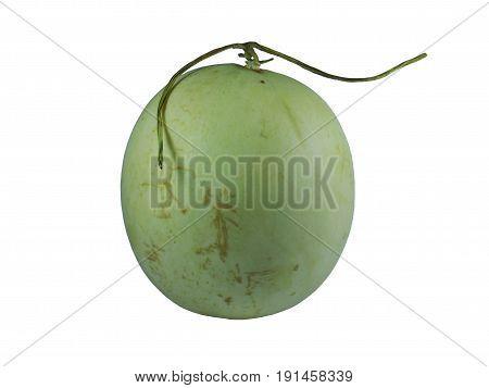 green cantaloupe melon on white background,Green cantaloupe melon isolated on white background