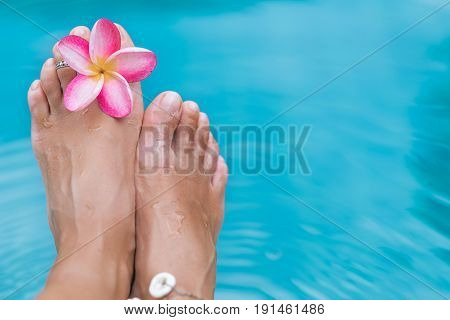 Woman's female legs in blue swimming pool water with frangipani plumeria flower