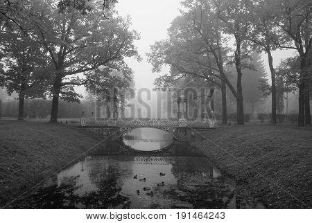 Misty morning and a Chinese bridge in the Alexander Park in Tsarskoye Selo