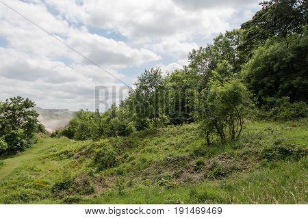 Scrub encroachment onto calcareous grassland. Invasion of bushes and coarse vegetation displacing diverse flora of limestone meadow at Wick Golden Valley nature reserve