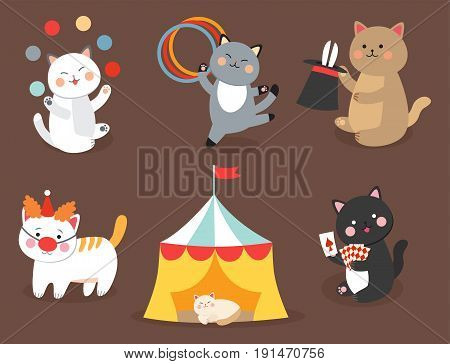 Circus cats vector cheerful illustration for kids with little domestic cartoon animals playing mammal. Carnival style vintage beautiful kitten character zoo wild pet.