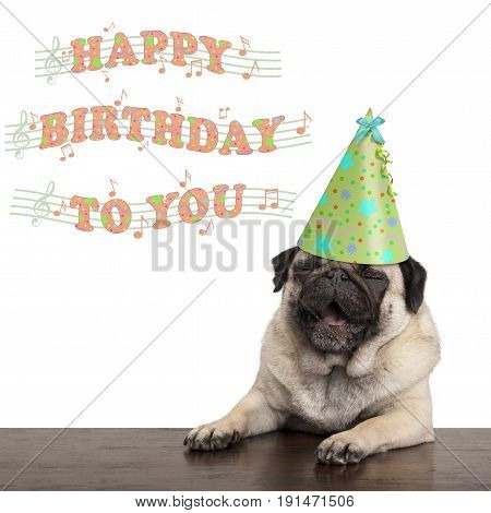 adorable cute pug puppy dog singing happy birthday to you isolated on white background