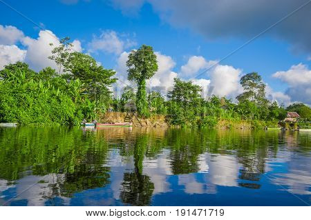 Jungle reflected on the river, inside of the amazon rain forest of Cuyabeno Natiional Park in Ecuador.