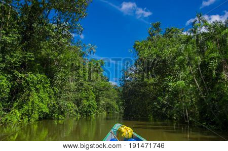 Travelling by boat into the depth of Amazon Jungles in Cuyabeno National Park, Ecuador.