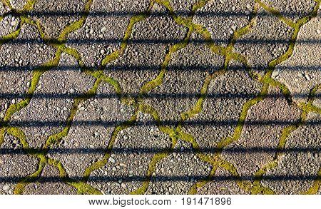Bars of shadows over some zig zag shaped paving blocks.