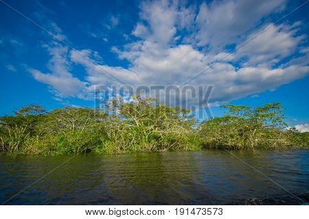 Cuyabeno river, rainforest, terrain of Siona indigenous people. Transport by the river by motorboats, great place to visit, jungle, lots of animals. in Cuyabeno National Park, in Ecuador.