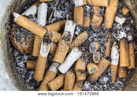 The used cigarettes stub placed on big jar