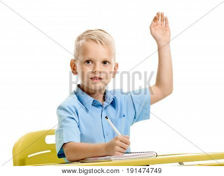 Smart little schoolboy with raised hand ready to answer on lesson