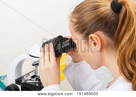 Photo of young scientist working in laboratory