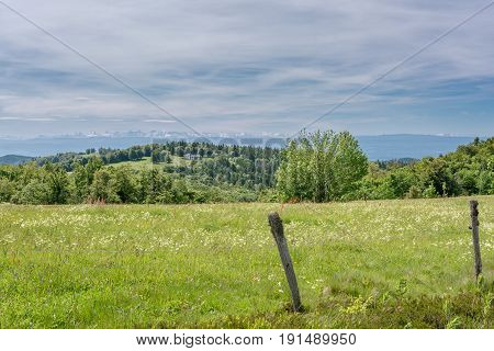 French countryside - Vosges. Pasture in foreground and view of the alps in the background.