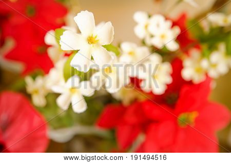 a white and red artificial flowers closeup