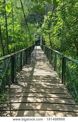 Suspended bridge leading into the green forest