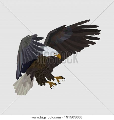 realistic eagle soaring eagle catching prey a symbol of freedom flat design vector image