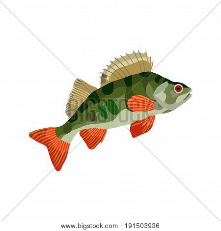 freshwater fish perch hishnik pond underwater emblema sticker ribatsky store flat design vector image