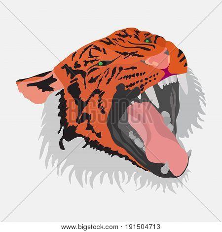 Tiger head flat design realistic vector image