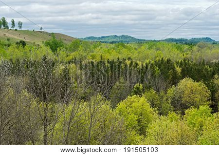 forest and hills near black river falls taken from overlook in wazee lake recreation area in jackson county wisconsin