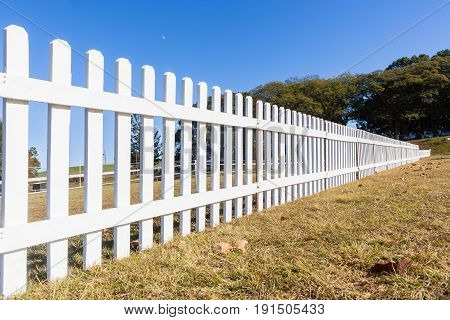 Boundary Wood Fence