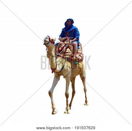 morocco berber riding camel isolated over white