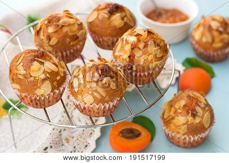 Apricot muffins with sliced almonds and fresh apricots