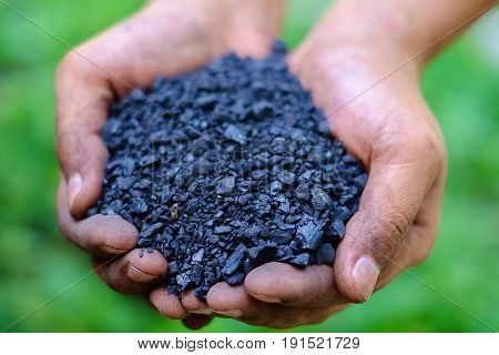 Selective focus of fine coal (sizing of 0-10 mm) in worker's hands against the blurred green natural background, energy concept