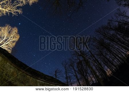Fisheye View Of The Starry Sky With Blurred Motion Clouds, Captured From Sparse Beech Woodland. Ursa