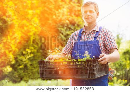Portrait of confident gardener holding crate of potted plants